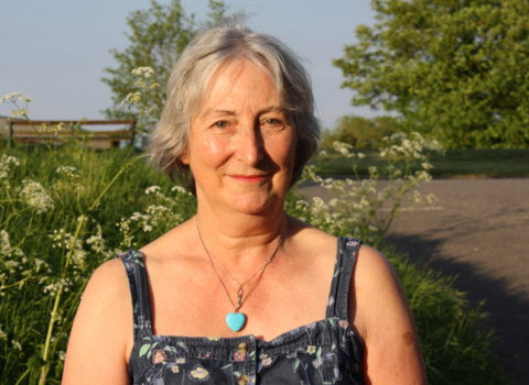 About Sue Bayliss